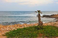 Sicilia, costa nei pressi di Petrosino (Marsala) Sicilia (tango-) Tags: italy italia tuscany sicily palermo italie sicilia ragusa modica  sicile  sziclia             sicilya    tiberiofrascari