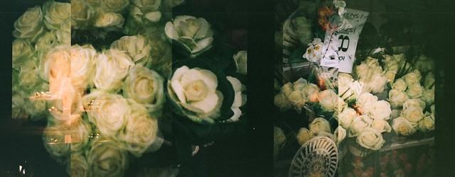 flowermultiple