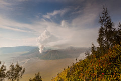 Mount Bromo (Helminadia Ranford(New York)) Tags: indonesia landscape volcano helminadia mountbromo eastjava