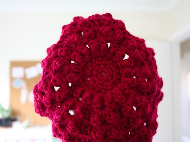 new raspberry beret project