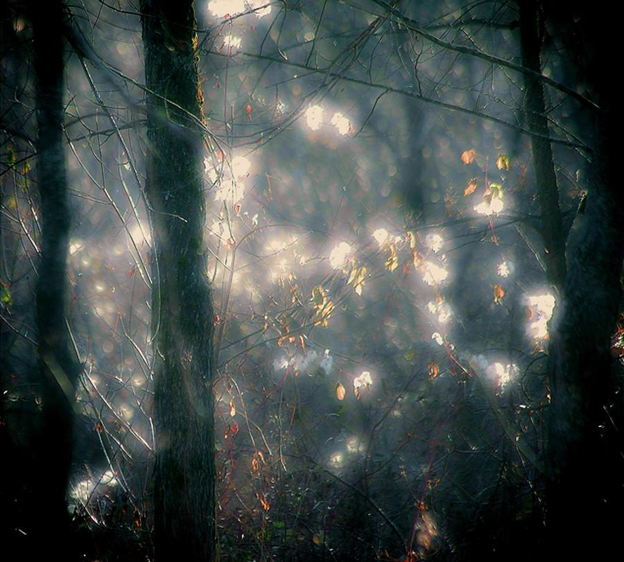 luz derramada