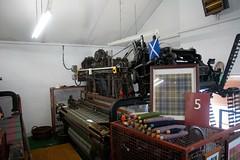 Scotland-6476