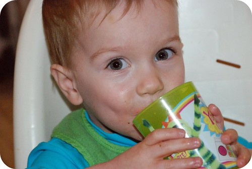 Quinn Drinking