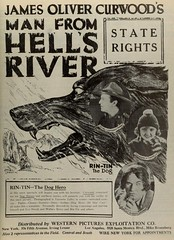 Vintage Film Advert for Man from Hells River 1922 with Rin-Tin the Dog (CharmaineZoe's Marvelous Melange) Tags: 1920s cinema film vintage silent advert movies 1922 silentfilm twenties