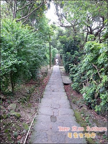 2011桐花貓空指南步道