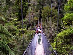 abel tasman NP (hkimproject2011) Tags: nz southisland kaiteriteri abeltasmannationalpark goldenbay