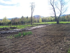 long rows (White Gates Farm) Tags: vegetables garden nh greenhouse veggies tamworth whitegatesfarm