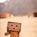 [21/52] Danbo in the desert