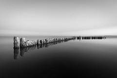 Bombay Beach (dpietzuch) Tags: california white black beach nikon bombay saltonsea d700 dpietzuch 1635mmf4