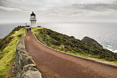 Te Reinga (Tannachy) Tags: new sea cloud lighthouse wall island path north zealand cape northland reinga