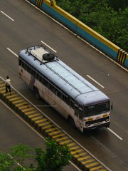 12M Asiad (Akshay buses) Tags: bus buses tata 12m cwd asiad airsuspension msrtc busfanning
