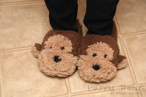 115-monkey slippers