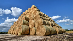 Bale pyramid, Brooklands farm, Whitstable (Aliy) Tags: bale bales roundbale roundbales pyramid stack farm brooklands whitstable kent explored