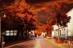 Autumn (patrickmai875) Tags: autumn herbst orange red rot warm wow street strase nature city white weis love liebe canon 6d sigma art kunst 24mm f14 urban