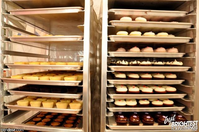 Panjabi DC Cupcakes + Kennedy Center resized (58)