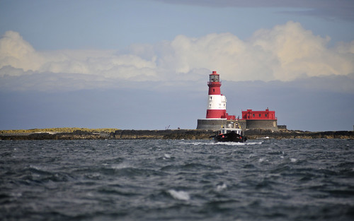 Approaching The Farne Islands