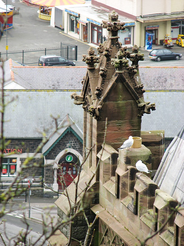 Barmouth church turret with seagulls