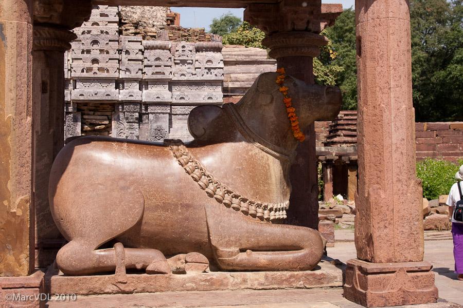 Rajasthan 2010 - Voyage au pays des Maharadjas - 2ème Partie 5598417403_0ea20eb085_o