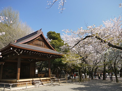 Sakura at Yasukuni Shrine by Yoshikazu TAKADA, on Flickr