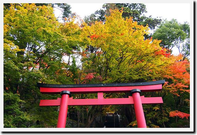 20101120_084922_談山神社