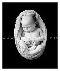 sneak newborn