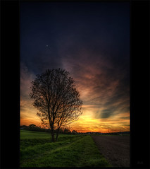 The dark side of the moon (Kemoauc) Tags: blue sunset sky orange moon tree green photoshop spring nikon sonnenuntergang sundown himmel wolken baum frhling topaz d90 photomatix hemmingen nikond90 kemoauc