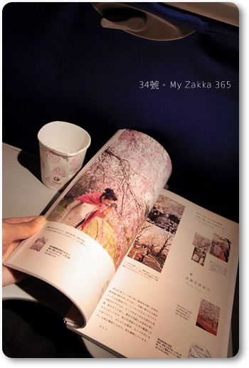 20110407_ChinaShanXi_1995 f