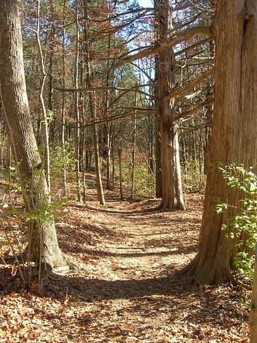 Nashville Path