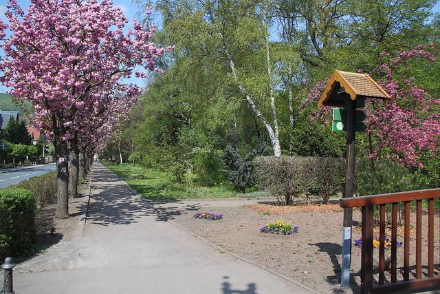 An der Schwarzabrücke im Kurpark