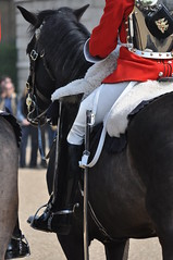 Guardia Real Britnica - British Royal Guards (Oscar in the middle) Tags: soldier spurs britain united great kingdom cavalry reino unido