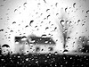 Photo-a-day #116: April 26, 2011 - Raining