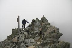 涸沢岳の山頂