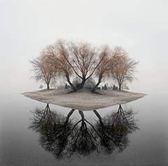 dream-island (JeremyOK) Tags: trees lake art water photoshop island bc okanagan dream experiment surreal floating dreamscape peachland nohorizon inventedlandscapes mirrororrims