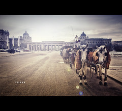 Vienna Heldenplatz [Explore] (Photofreaks [Thank you for 1.000.000 views]) Tags: vienna wien park old city travel vacation horses sculpture horse white building art tourism church monument fountain st statue architecture geotagged outdoors austria town hall sterreich europe european cityscape tour carriage cathedral cab gothic parliament landmark palace historic christian explore capitol franz imperial historical pferde mozart danube athene emperor austrian fiaker hofburg sissi schonbrunn pallas donau aut heldenplatz innerestadt habsburg horsedriven photofreaks geo:lat=4820675387 geo:lon=1636440799 exploreapr282011158 wwwphotofreakseu adengs