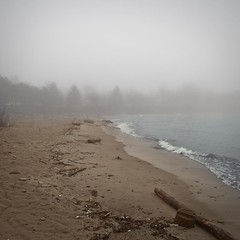 Beach (joshbezemer) Tags: park bridge white mist lake ontario man black beach water fog creek port river walking outdoors wooden still log sand waves waterfront perspective trail helen credit fade lakeview mississauga lakefront cooksville molasy