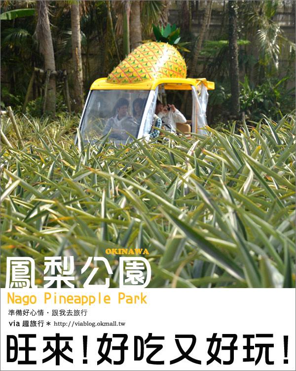 【via的沖繩旅誌】名護鳳梨公園~可愛又香甜的鳳梨樂園!