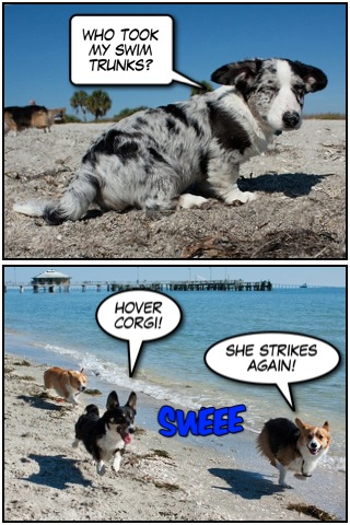 Corgi Comic