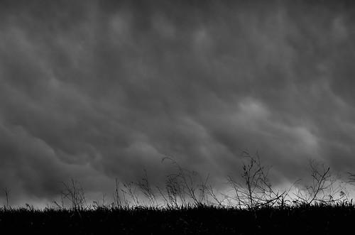 Rain Coming DSC_2417