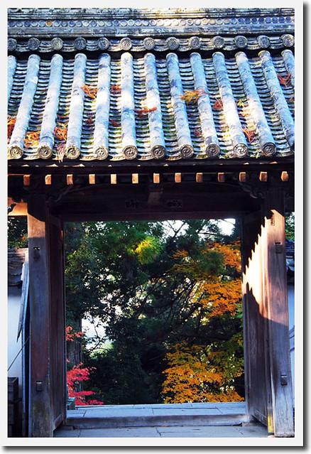 20101121_081527_吉野山_如意論寺