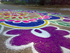 Picture 006 (Kalyani Clicks) Tags: pink color cute south tradition pongal kolam