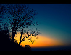 Epilogue (Shutterfreak ) Tags: sunset mountain tree silhouette bandarban