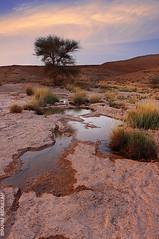 ( ibrahim) Tags: nature rain canon landscape after ibrahim abdullah   50d   canon50d