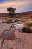 (© ibrahim) Tags: nature rain canon landscape after ibrahim abdullah ابراهيم مطر 50d طبيعه كانون canon50d شعيب بقايا غدير لاندسكيب الغاط طلح