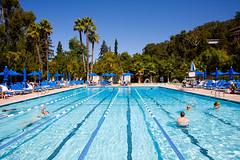 Swim With Me (Thomas Hawk) Tags: california usa pool america berkeley unitedstates 10 unitedstatesofamerica swimmingpool eastbay claremont claremontresort fav10 claremontresortandspa