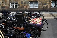 "Danish Parliament - A Fraction of the Bike Racks Outside ""Borgen"" (Mikael Colville-Andersen) Tags: bike bicycle copenhagen parliament politician bikerack borgen cargobike cykling folketing cyclechic"