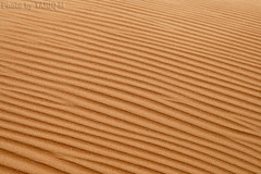Sandy Abstraction (TARIQ-M) Tags: texture landscape sand waves pattern desert patterns dunes strip abstraction riyadh saudiarabia         canon400d        canonefs18200mmf3556is