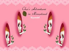 Choi's Adventures in Mirrorland