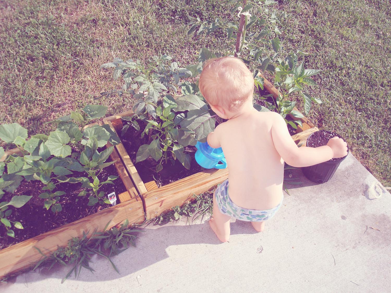 06152011 - Garden Boy