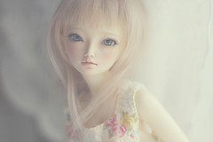 summer days ii (c a r o l i n e*) Tags: doll dress bjd fairyland mnf shushu pinkcocktail leekeworld minifee icantdance
