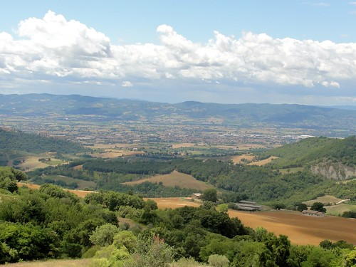 Italy Countryside Picture: Umbria, Assisi, Summer